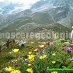 La Valle d'Aosta e le sue vette – FOTOGALLERY CONOSCEREGEOLOGIA.IT
