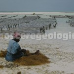 Premiazione del 2° Concorso di Fotografia sul tema ''Nutri Terra'': L'Influenza della Geologia sulle produzioni Alimentari