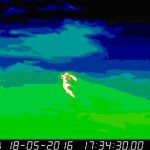 Etna: aggiornamento 19 maggio 2016, ore 13:00 locali