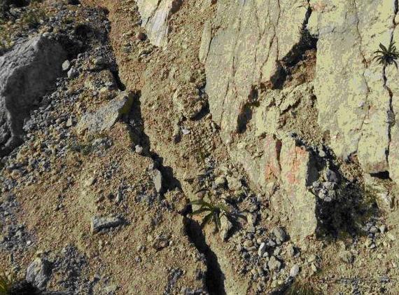 Terremoto di Amatrice: alla ricerca della faglia – NOTA STAMPA INGV