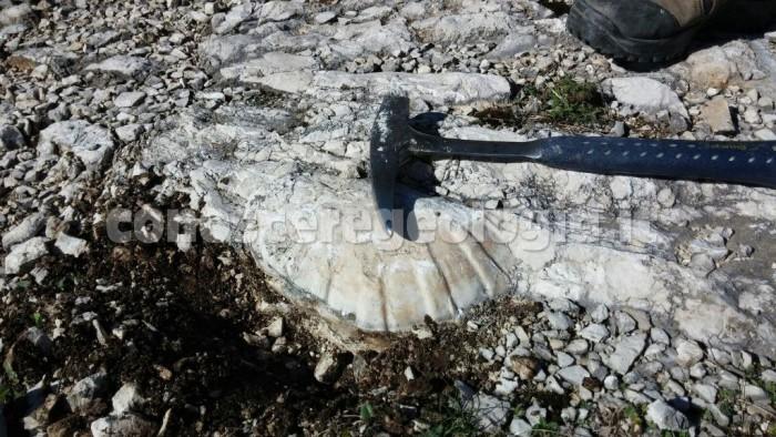 Geologi alla geoescursione nel Matese sannitico-molisano – FOTOGALLERY