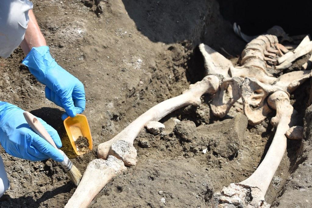 Pompei, emerge uno scheletro nel cantiere dei nuovi scavi